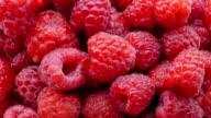Juicy fresh raspberries video