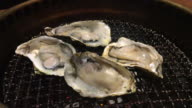 Juicy Oysters on Grill video