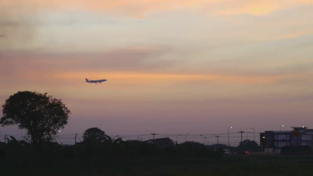 Jumbo jet airplane landing sunset background. video