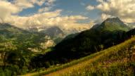 Jungfrau peak and alpine meadow wild flowers time lapse video