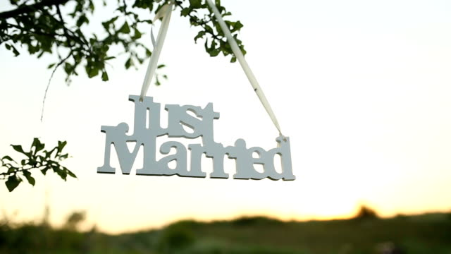 just married decoration for wedding video