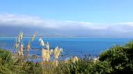 Kaikoura Peninsula Walkway, South Island, New Zealand video
