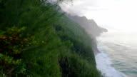 Kauai, Hawaii Scenic UAV Drone Shots video