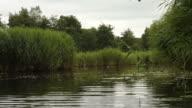 Kayaking in nature video