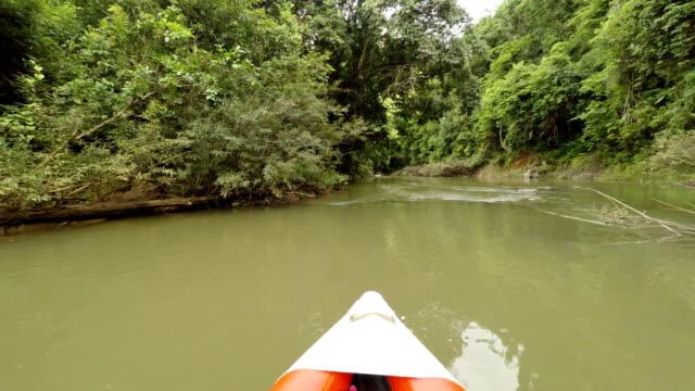 Kayaking in river video