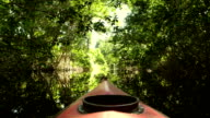 Kayaking in the Cacao Lagoon video
