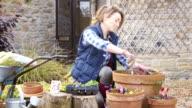 Keen Gardener video