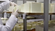 Keeping rolls of homemade cheese in cold storage video