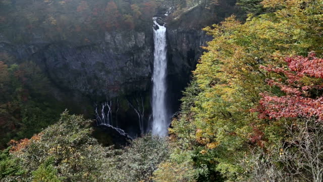 Kegon Waterfalls with Colourful tree autumn leaves in NIkko video