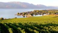 Kelowna Vineyard Winery Okanagan Valley video