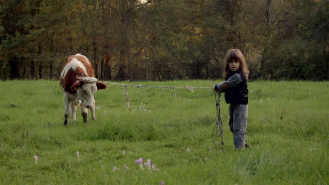 Kid and a Cow video