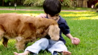 Kid with Cocker Dog (HD) video