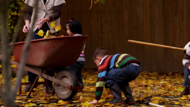 Kids and Mom pick up autumn leaves video