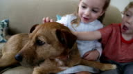 Kids and their Doggy video