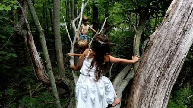 Kids Climbing In Tree video