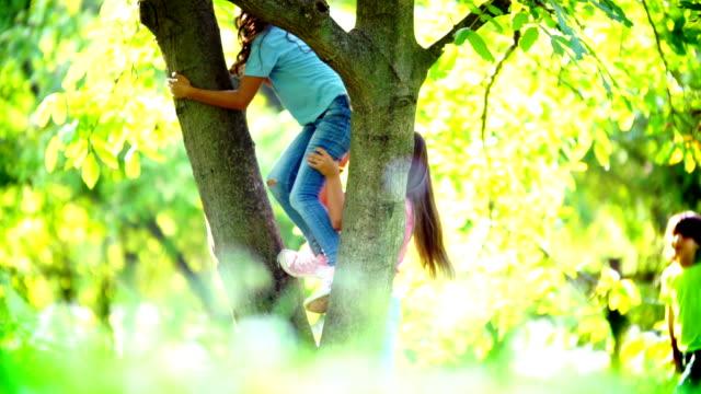 Kids climbing up a tree. video