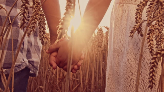 Kids holding hands in the wheat field video
