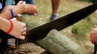 Kids sawing wood with hand saw video