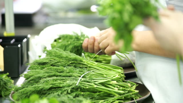 Kitchen workers choose fresh herbs and collect it in bundles video