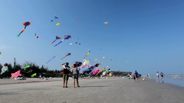 Kite Festival on the beach video