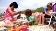 Kite Flying At The Beach video