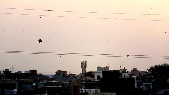 Kites flying in the sky video