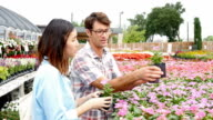 Knowledgeable nursery owner talks to female customer about flowers video