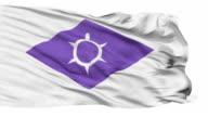 Kofu Capital City Isolated Waving Flag video
