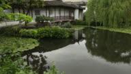 Koi Pond Sun Yat Sen Park, Vancouver video