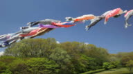koinobori in Japan video
