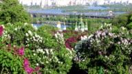 Kyiv Botanical Garden in spring, Ukraine video