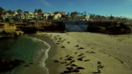 La Jolla Aerial Seal Beach video