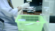 lab girl working in laboratory video