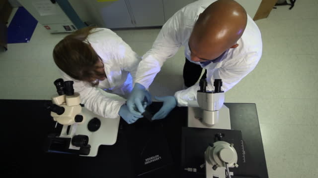 Lab High POV video