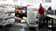 labor worker sorting goods at express deliver assembly line video