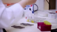 Laboratory assistent adds reagent into test tubes video
