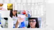Laboratory Work - Montage video