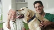 Labrador at vet office video