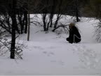 Labrador Playing Snow video