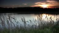 Lake at Sunset video
