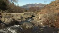 UK Lake District Bridge - HD & PAL video