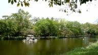 lake in the garden video