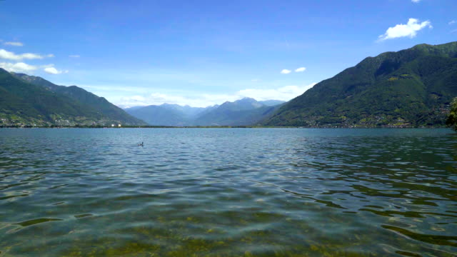 Lake Langensee in the canton of Tessin, Switzerland. video