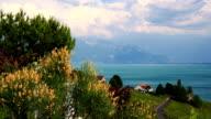 lake Leman and vineyards video