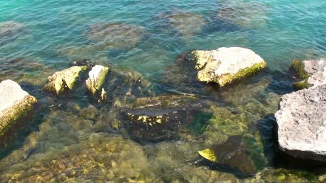 Lake Michigan Waterfront video