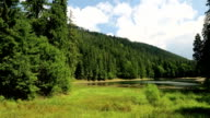 Lake Synevir in Carpathian Mountains, Ukraine video