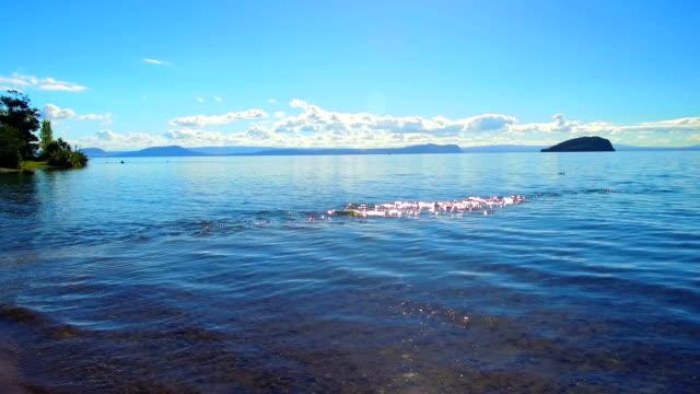 Lake Taupo video