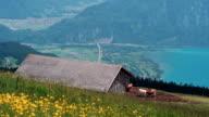 lake Thun under Jungfrau mountain video
