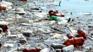 Lake Water Pollution video