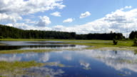Lake wetland in the countryside with green algae in the summer of 2015 Russia FHD video